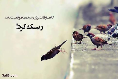 21850 مهدی كیانی