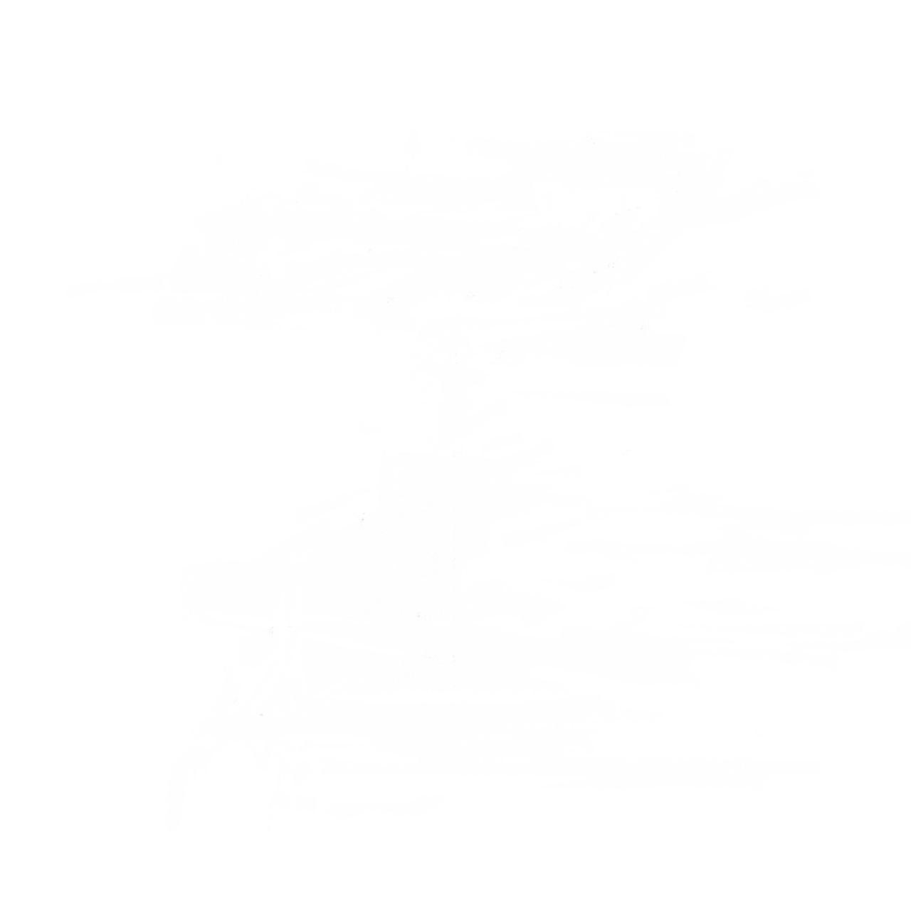 272984 مدیریت سایت
