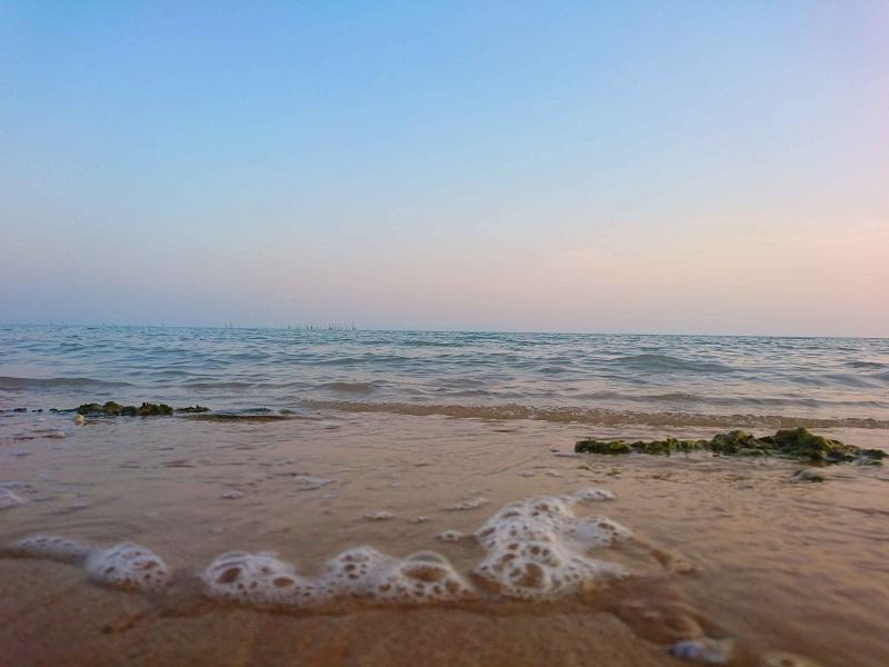 جزر و مد احسان وروجک