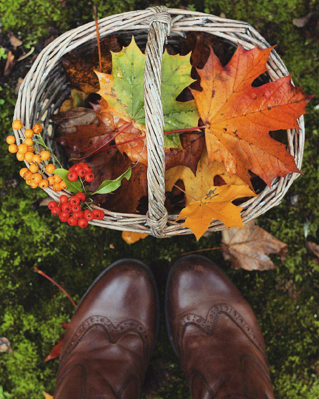 پاییز marjan24
