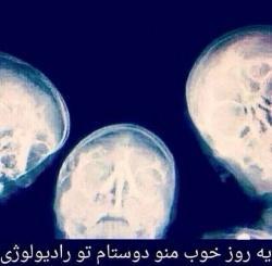 22673 محمد 92