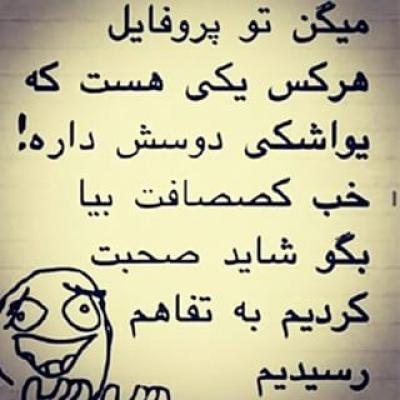 بوشهر هستی1