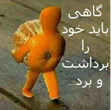159530 لیلی21 شیراز