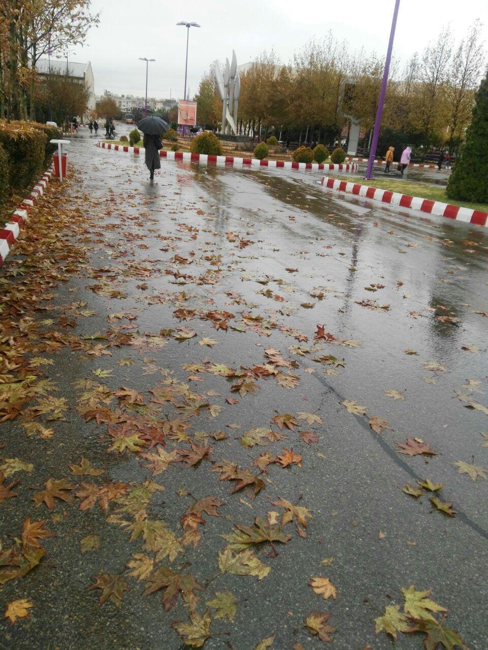 خیابان بارانی آسنات76