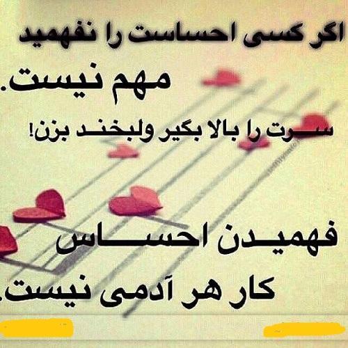 اگر کسی احساست را نفهمید مهم نیست ناصر20