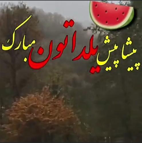 یلدا مبارک ناصر20