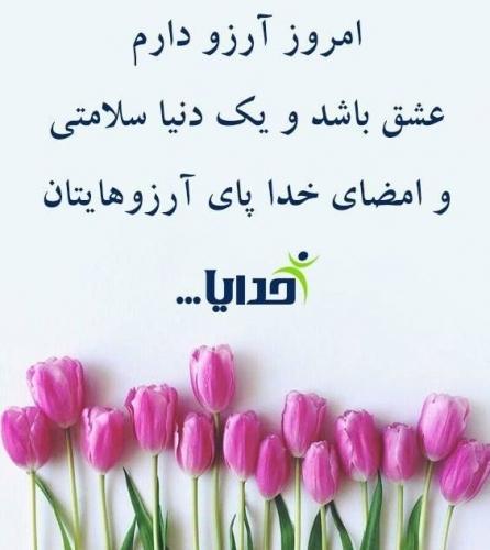 267049 ناصر20