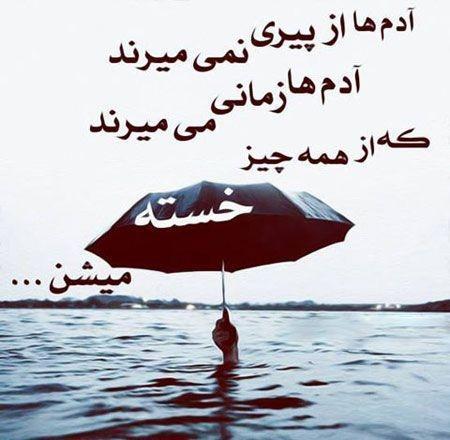 236161 ناصر20