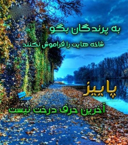 پاییز ناصر20