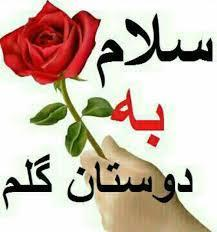 سلام ناصر20