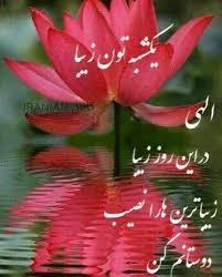 یکشنبه تون زیبا ناصر20