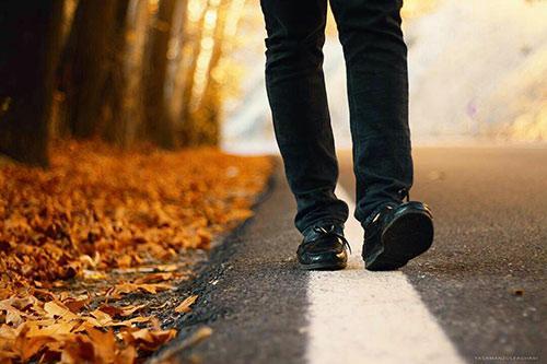 قدم زدن در پاییز آیت