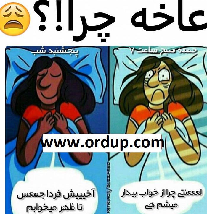 دانلود آهنگ جدید محمدعلی و Mozarea به نام الان کو  Download New Song By Mohammad Ali And Mozarea Called Alan Koo الناز33