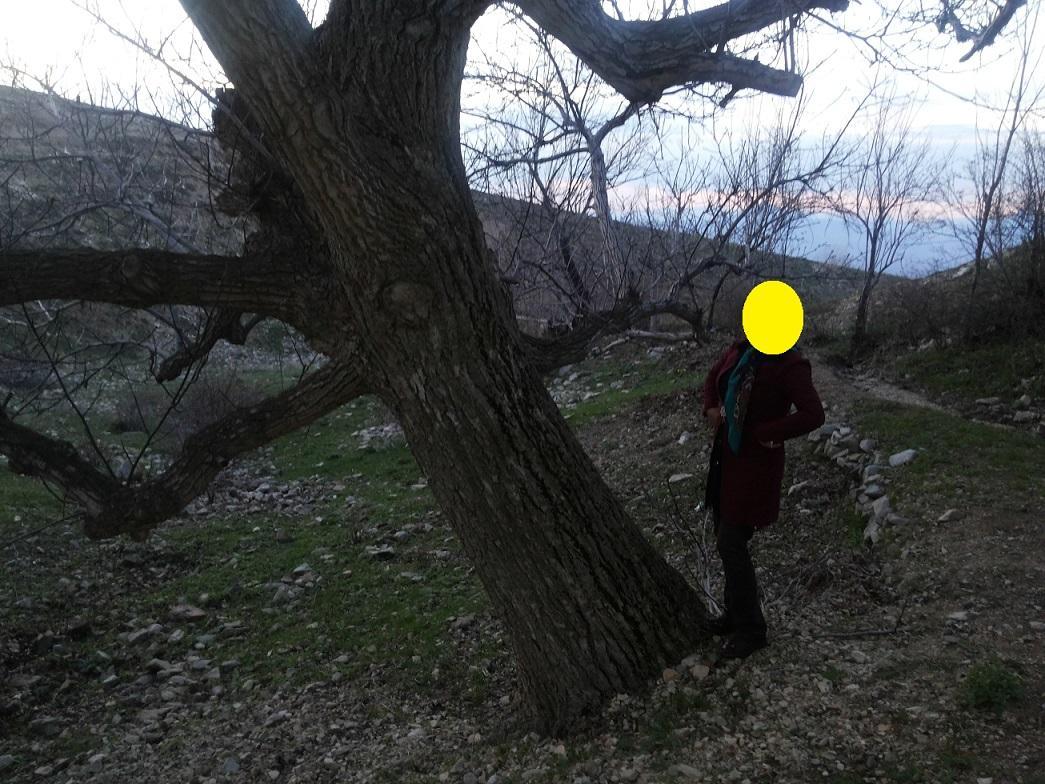 الناز33 روستای داران بخش جلفا الناز33