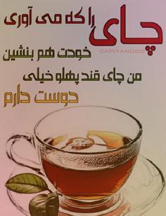 چای را که میاوری خودت هم بنشین الناز33