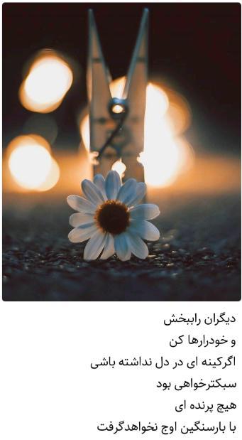 کینه ای نباشید الناز33