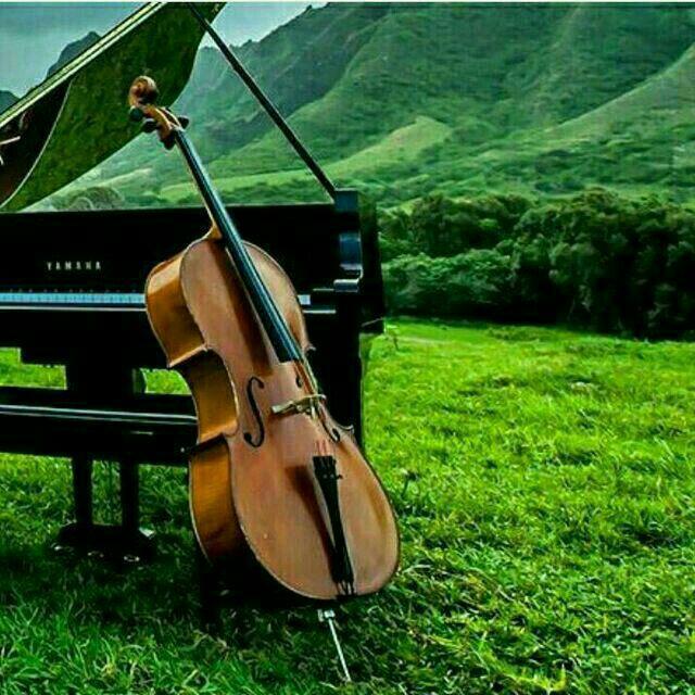 زندگی سازِ دل است  تو نوازندهٔ این سازی و بس  تو اگر شاد زنی شاد شوی  گرچه باشی چو قناری به قفس  «ساز زندگیتون همیشه کوک» **پسرکوهستان**