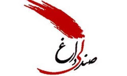 222839 محمدرضاا