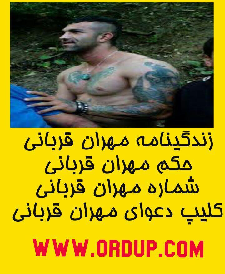 زندگینامه مهران قربانی مهران قربانی- تنهای وحشی ساری