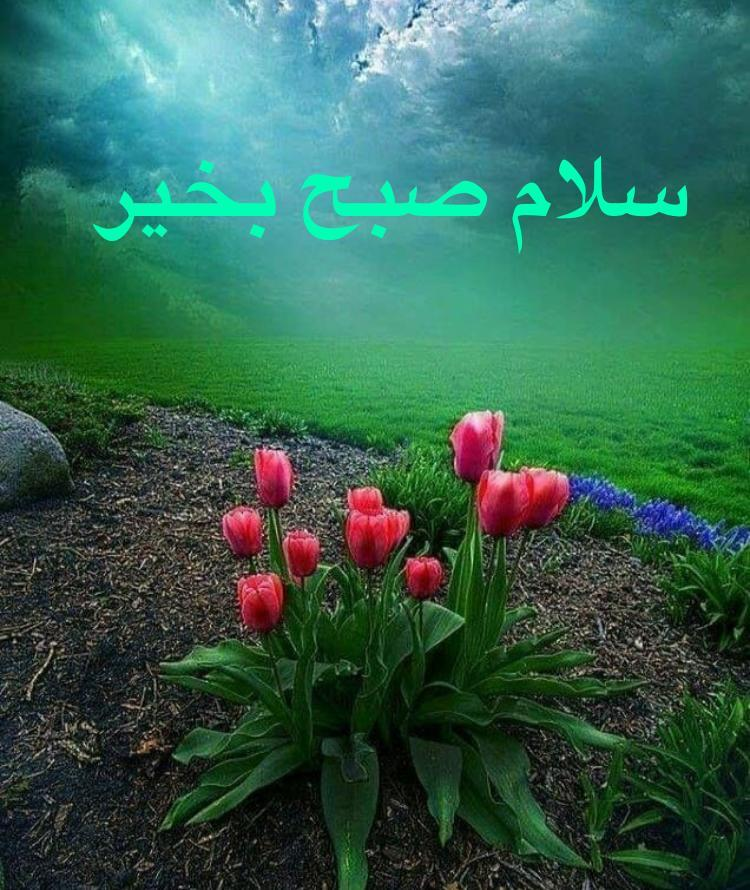 256712 حسن1344