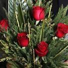 گل سرخ آوای بهار