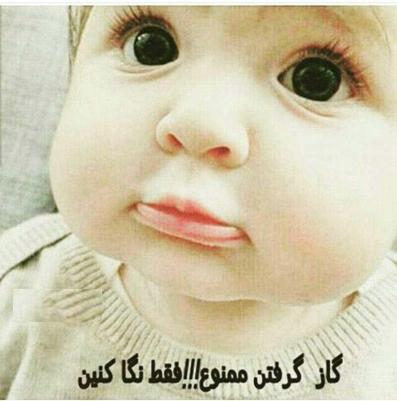 158879 حاامد