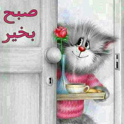 210369 **محسن**