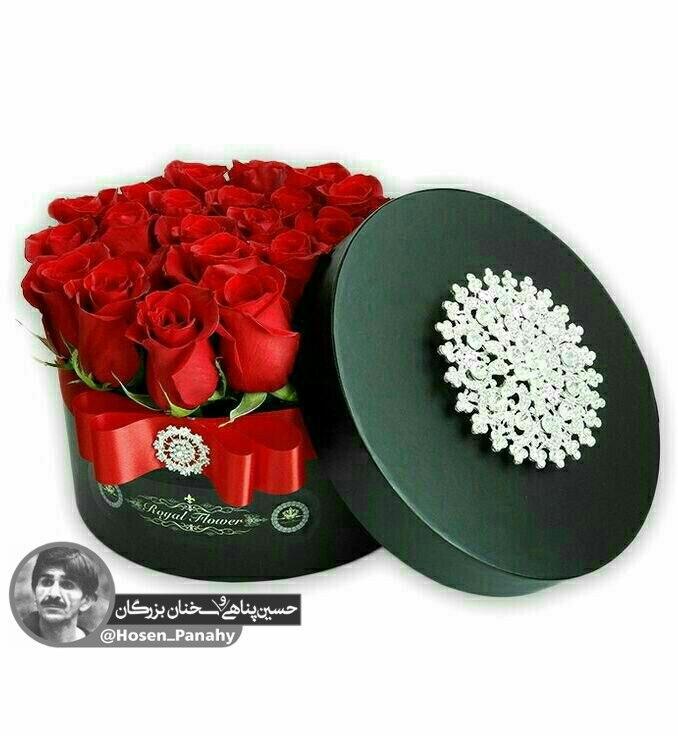 213591 **محسن**