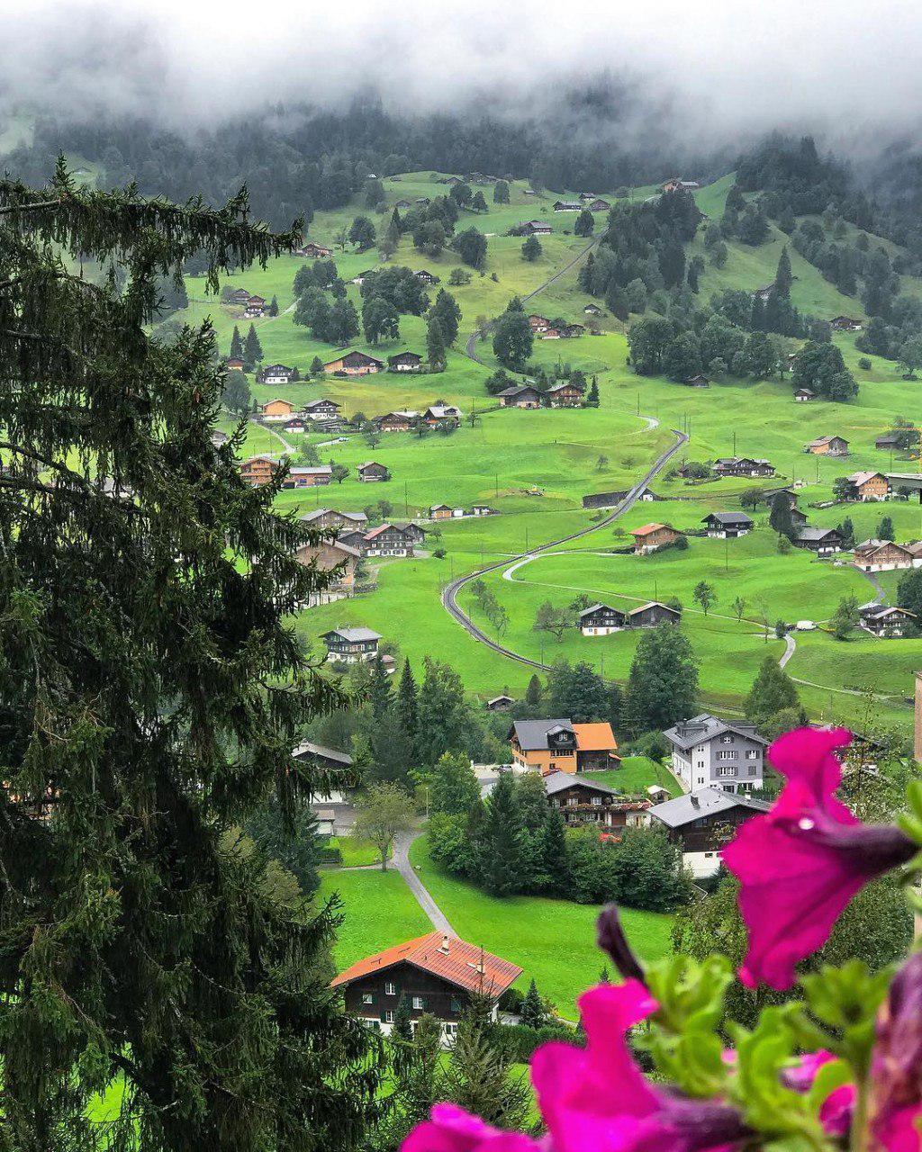 سوئیس ، گریندلوالد **abdolla**