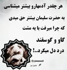 260922 سپیده سادات شاد