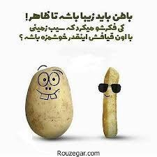 261234 سپیده سادات شاد