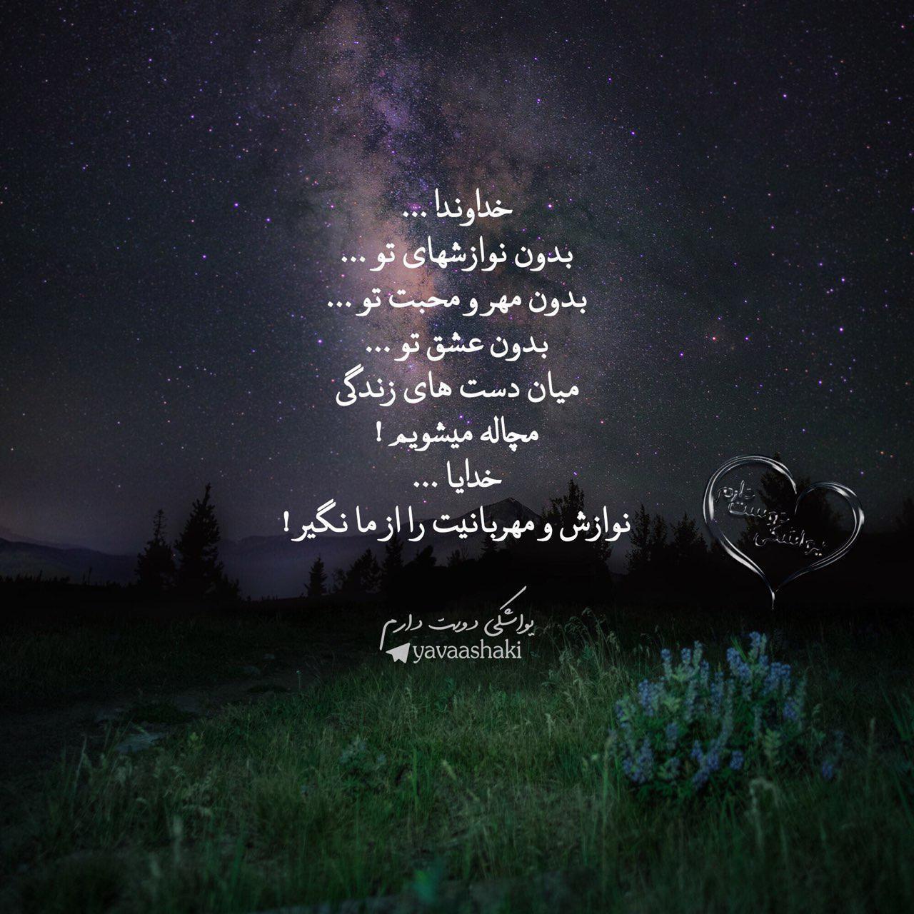 278560 محمد متين