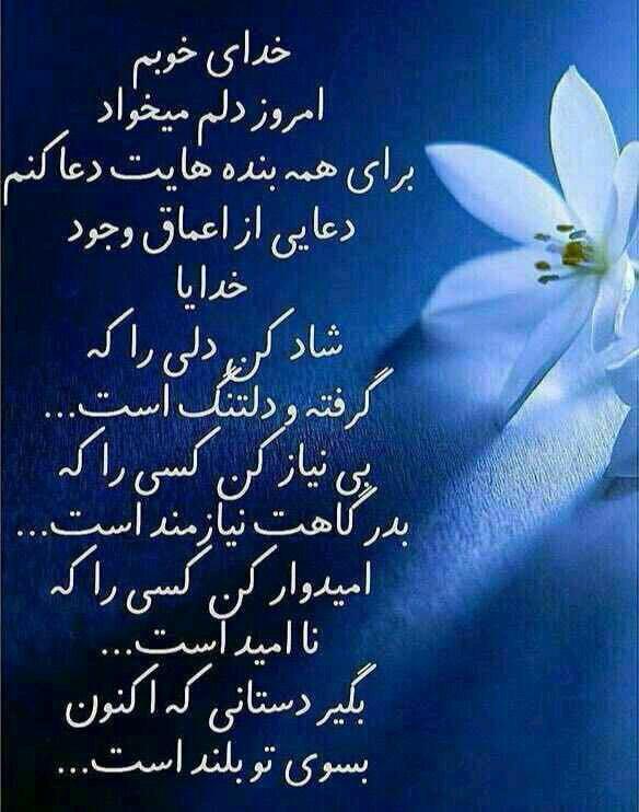 277933 محمد متين