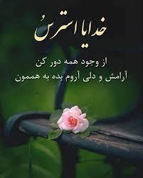 277934 محمد متين