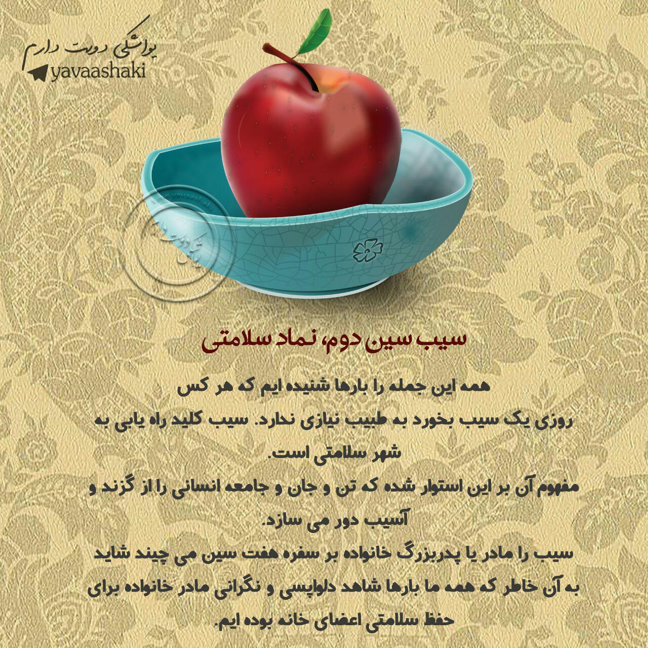 172468 محمد متين