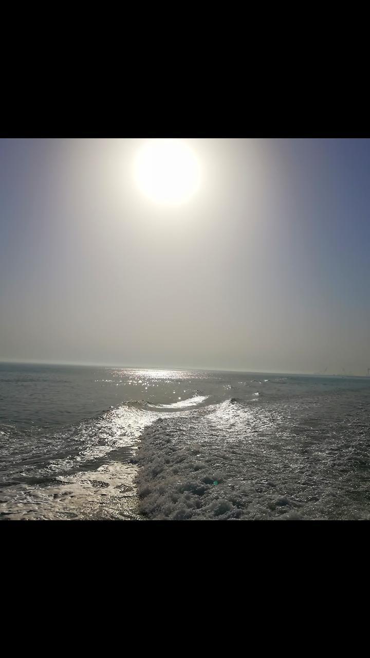 228329 ساناز بوشهر