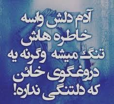 226517 ساناز بوشهر