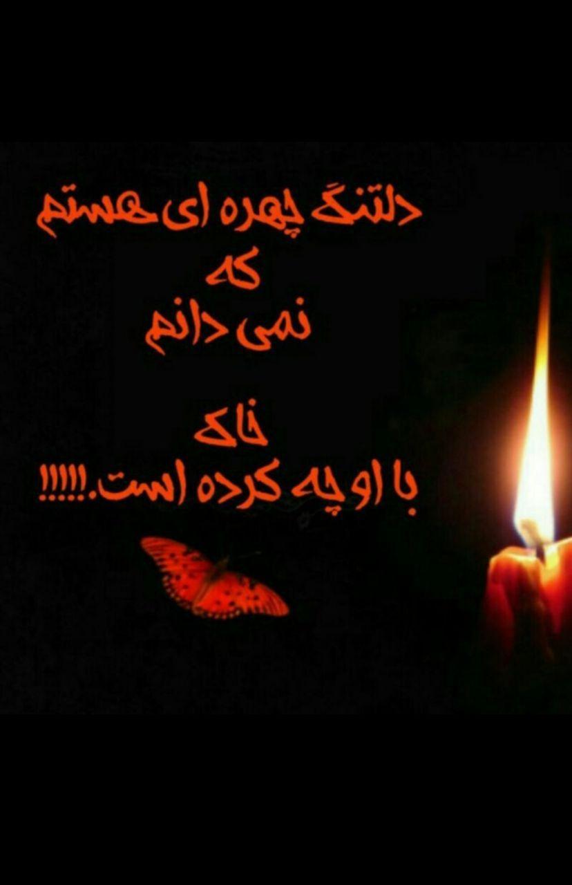 268917 سمن بوشهر