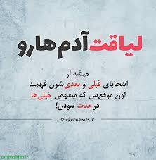 226062 ساناز بوشهر