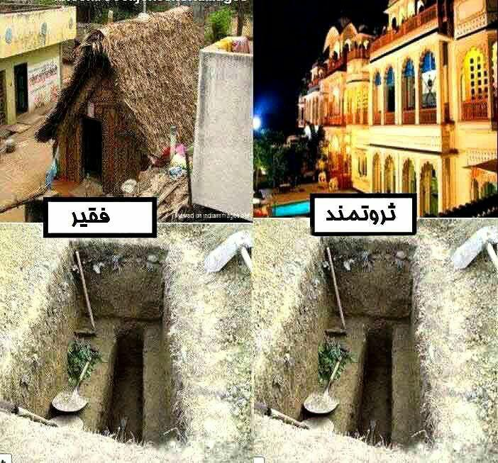 270929 محمد88