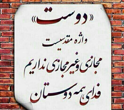 254317 محمد88