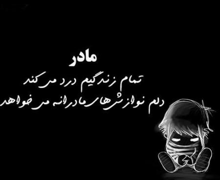 257248 Reza Rezaei