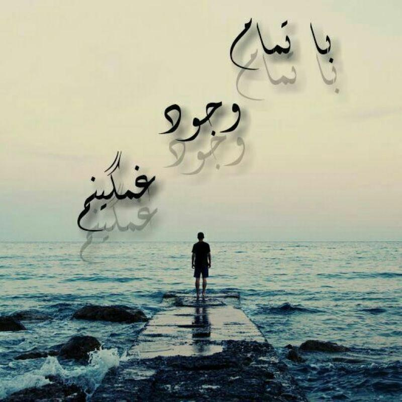 261384 Reza Rezaei